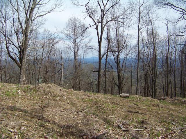 TBD Mountaineer Way, Fancy Gap, VA 24328 (MLS #68943) :: Highlands Realty, Inc.