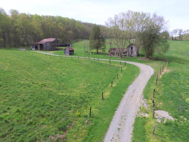 18260 Spring Lake Road, Abingdon, VA 24210 (MLS #69036) :: Highlands Realty, Inc.