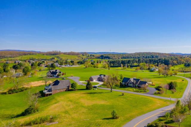 2944 Big Valley Drive, Draper, VA 24324 (MLS #69046) :: Highlands Realty, Inc.