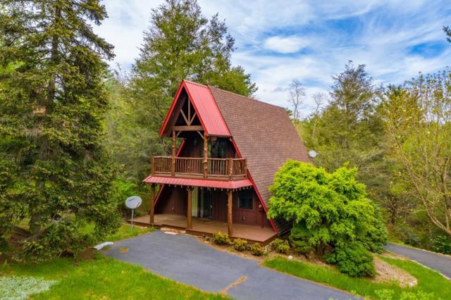 179 Mountaineer Way, Fancy Gap, VA 24328 (MLS #69460) :: Highlands Realty, Inc.