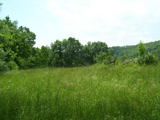 TBD Old Saltworks Road, Meadowview, VA 24361 (MLS #69548) :: Highlands Realty, Inc.