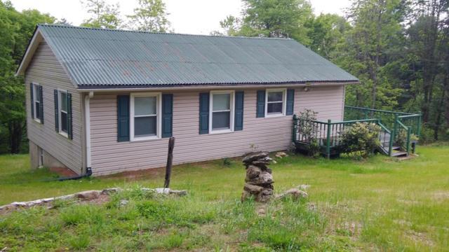 91 Mountaineer Way, Fancy Gap, VA 24328 (MLS #69549) :: Highlands Realty, Inc.