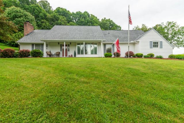 258 Green Hill Circle, Chilhowie, VA 24319 (MLS #69574) :: Highlands Realty, Inc.