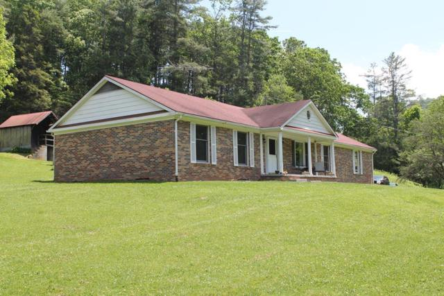 222 Mule Hell Rd, Wytheville, VA 24382 (MLS #69610) :: Highlands Realty, Inc.