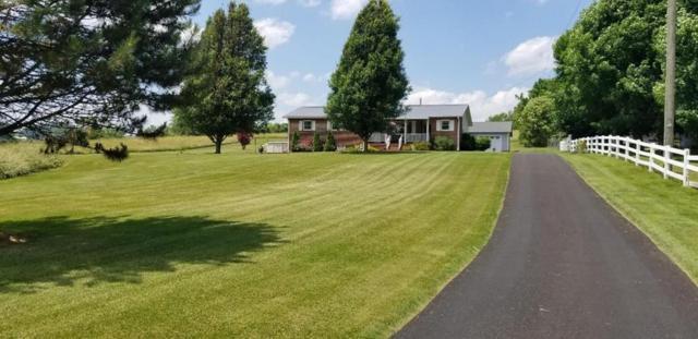 13345 Ritchie Road, Meadowview, VA 24361 (MLS #69725) :: Highlands Realty, Inc.