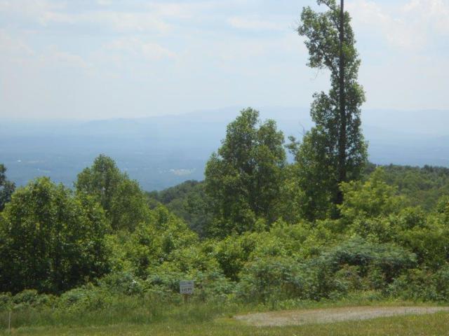TBD East Pheasant Chase, Fancy Gap, VA 24328 (MLS #69799) :: Highlands Realty, Inc.