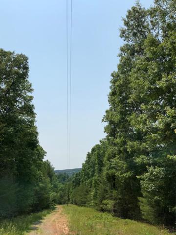 TBD Heather Ln., Max Meadows, VA 24360 (MLS #69825) :: Highlands Realty, Inc.
