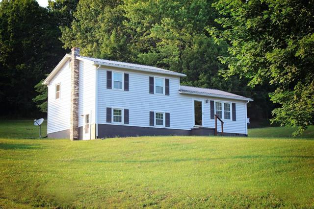 349 Ivanhoe Rd, Max Meadows, VA 24360 (MLS #69842) :: Highlands Realty, Inc.