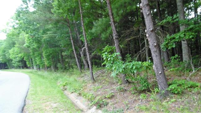 TBD Shady Forest Road, Max Meadows, VA 24360 (MLS #69889) :: Highlands Realty, Inc.