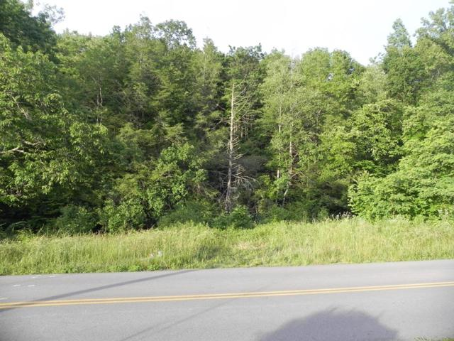 1639 St Clair Creek Rd, Chilhowie, VA 24319 (MLS #69951) :: Highlands Realty, Inc.