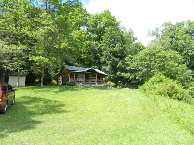 646 Hungry Mother Drive, Marion, VA 24354 (MLS #69952) :: Highlands Realty, Inc.