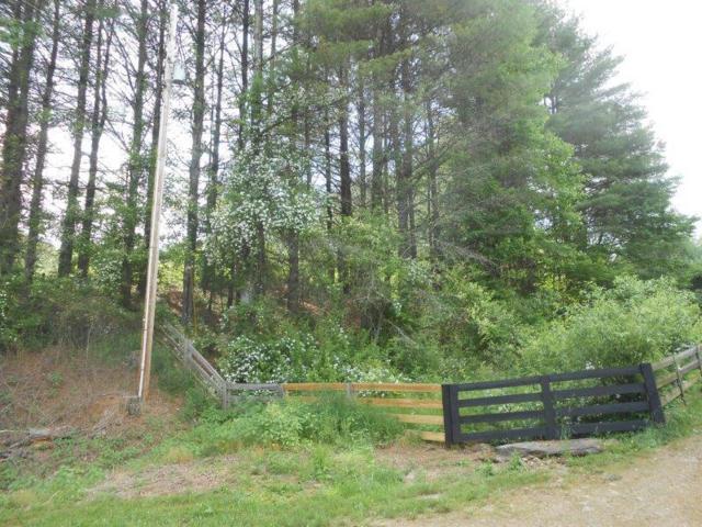 654 Silverleaf Rd, Dugspur, VA 24325 (MLS #69964) :: Highlands Realty, Inc.