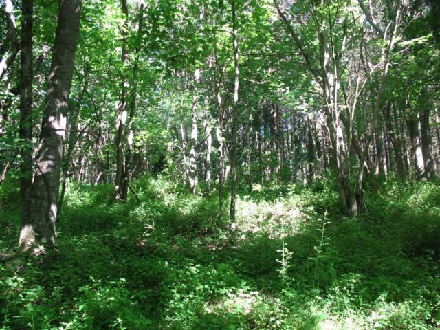 TBD Mt Olivet Road, Galax, VA 24333 (MLS #70004) :: Highlands Realty, Inc.