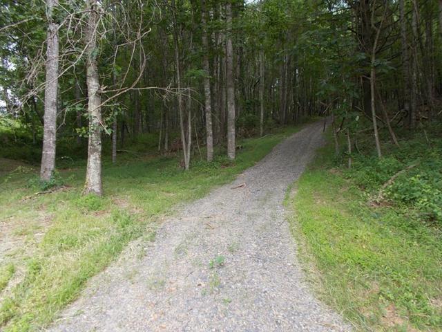 tbd Forest Oak Rd, Woodlawn, VA 24381 (MLS #70028) :: Highlands Realty, Inc.
