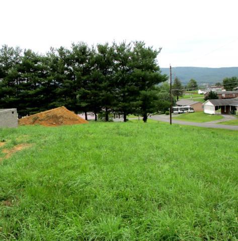 TBD Ridge, Wytheville, VA 24382 (MLS #70033) :: Highlands Realty, Inc.