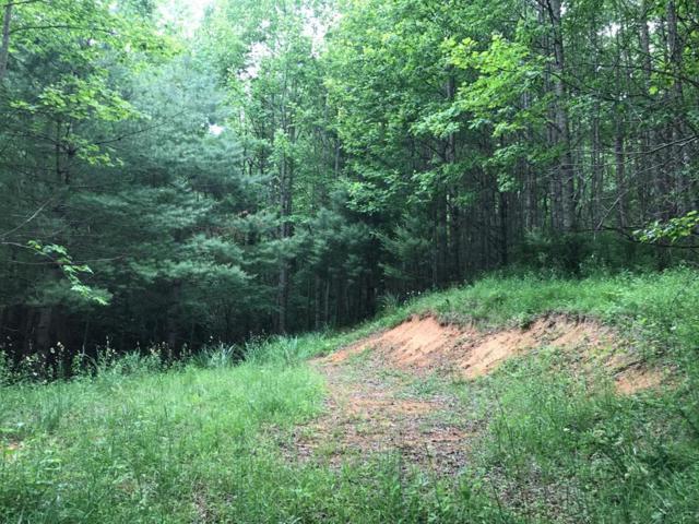TBD Wilson Highway, Independence, VA 24348 (MLS #70051) :: Highlands Realty, Inc.