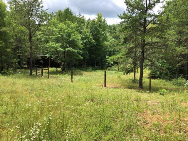 474 Scratch Gravel Rd, Ivanhoe, VA 24350 (MLS #70126) :: Highlands Realty, Inc.