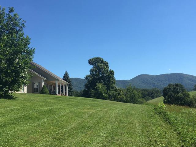 603 Stone's Chapel Rd, Elk Creek, VA 24326 (MLS #70137) :: Highlands Realty, Inc.