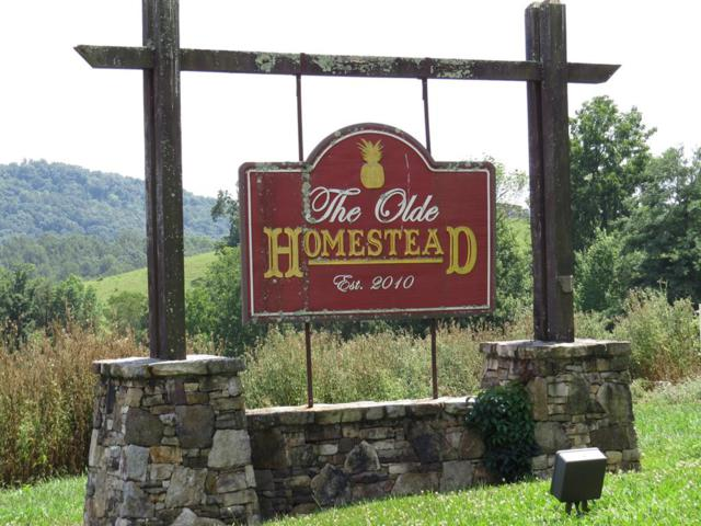 Lot 17 Homestead Way, Abingdon, VA 24210 (MLS #70540) :: Highlands Realty, Inc.