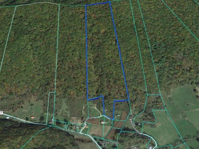 31 Acres Bebee Lane, Chilhowie, VA 24319 (MLS #70584) :: Highlands Realty, Inc.
