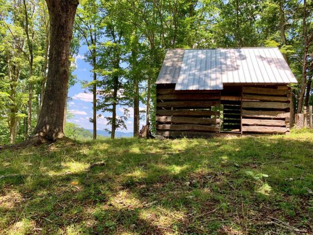 TBD Huckleberry Road, Crockett, VA 24323 (MLS #70612) :: Highlands Realty, Inc.