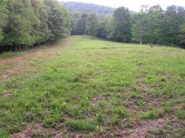 TBD Indian Meadows, Wytheville, VA 24382 (MLS #70849) :: Highlands Realty, Inc.