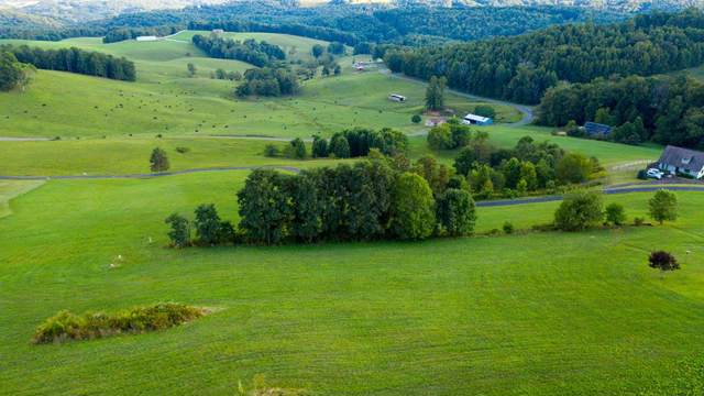 Lot 25 Edelweiss, Hillsville, VA 24343 (MLS #71274) :: Highlands Realty, Inc.
