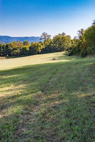 LOT 1 Browning Road, Abingdon, VA 24211 (MLS #71286) :: Highlands Realty, Inc.