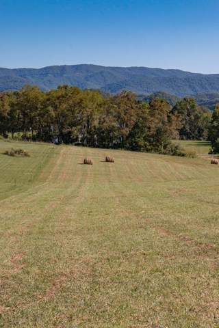 LOT 3 Browning Road, Abingdon, VA 24211 (MLS #71289) :: Highlands Realty, Inc.