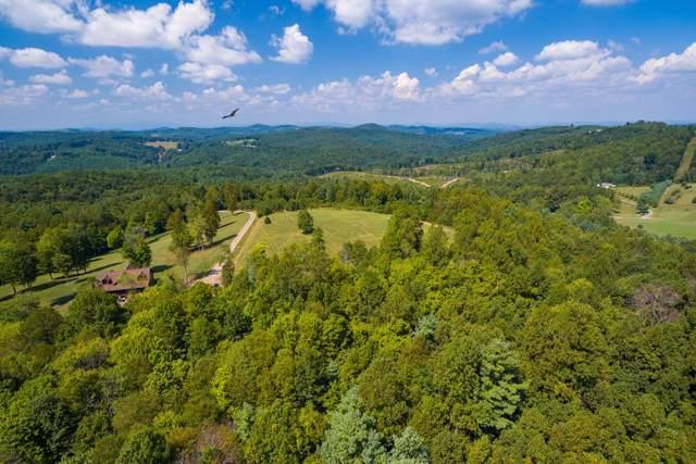 Lot 5 Devon Ridge Dr, Woodlawn, VA 24381 (MLS #71342) :: Highlands Realty, Inc.