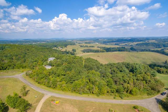 Lot 19 Sky Top Ln, Woodlawn, VA 24381 (MLS #71343) :: Highlands Realty, Inc.