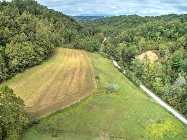 TBD Lorimer Branch Ln, Abingdon, VA 24211 (MLS #71368) :: Highlands Realty, Inc.
