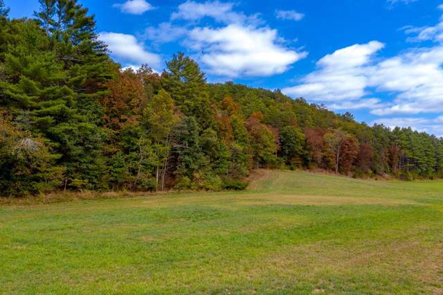 TBD Pinch Creek Rd., Bland, VA 24315 (MLS #71444) :: Highlands Realty, Inc.