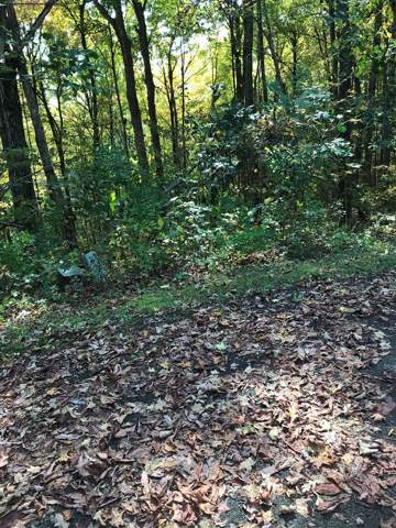 TBD Chestnutwood Drive, Chilhowie, VA 24319 (MLS #71519) :: Highlands Realty, Inc.