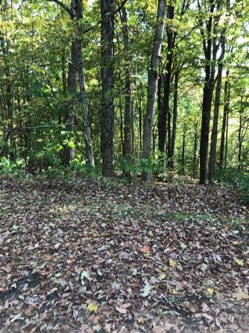 TBD Chestnutwood Drive, Chilhowie, VA 24319 (MLS #71520) :: Highlands Realty, Inc.