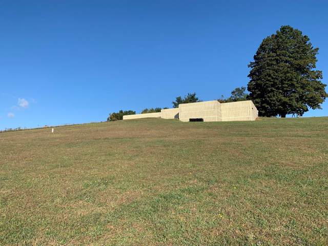TBD Kimberlin Road, Rural Retreat, VA 24368 (MLS #71669) :: Highlands Realty, Inc.