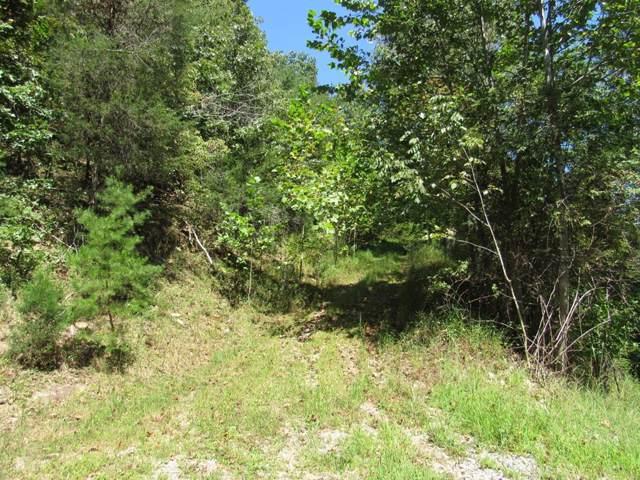 0 North Fork River Rd, Abingdon, VA 24210 (MLS #71783) :: Highlands Realty, Inc.