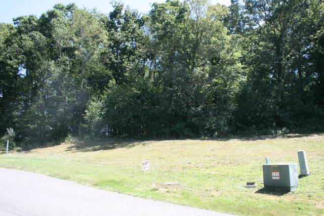 TBD Lot #19 Fairfield Subdivision, Wytheville, VA 24382 (MLS #71799) :: Highlands Realty, Inc.
