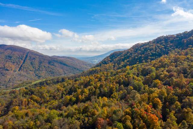 223 Acre Robertson Mountain Road, Narrows, VA 24124 (MLS #72001) :: Highlands Realty, Inc.