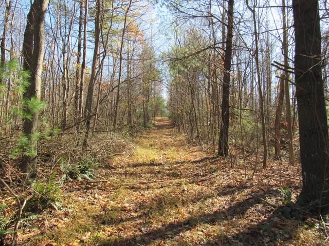 99A Blue Ridge Parkway, Fancy Gap, VA 24328 (MLS #72147) :: Highlands Realty, Inc.