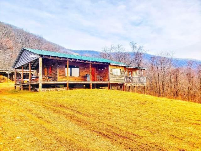 TBD Hendrickson Rd, Pembroke, VA 24136 (MLS #72462) :: Highlands Realty, Inc.
