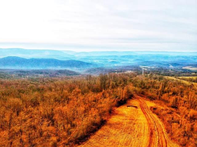 TBD Hendrickson Rd, Pembroke, VA 24136 (MLS #72463) :: Highlands Realty, Inc.