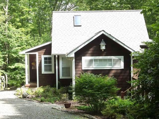 91 Ramp Hollow Lane, Meadows of Dan, VA 24120 (MLS #72498) :: Highlands Realty, Inc.
