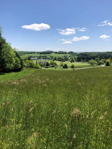 Lot 65 Big Valley Dr, Draper, VA 24324 (MLS #72544) :: Highlands Realty, Inc.