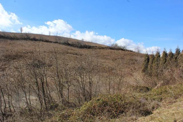 TBD Old Ebenezer, Marion, VA 24354 (MLS #72553) :: Highlands Realty, Inc.