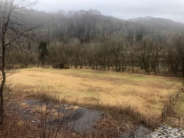 0 North Fork River Road, Abingdon, VA 24210 (MLS #72613) :: Highlands Realty, Inc.
