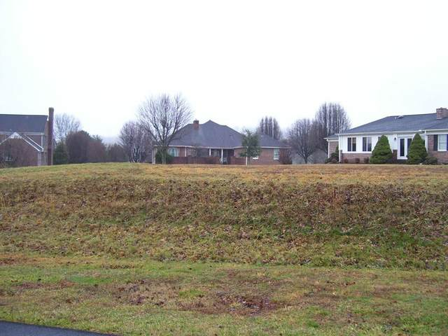 TBD Pinehurst Court, Abingdon, VA 24210 (MLS #72932) :: Highlands Realty, Inc.