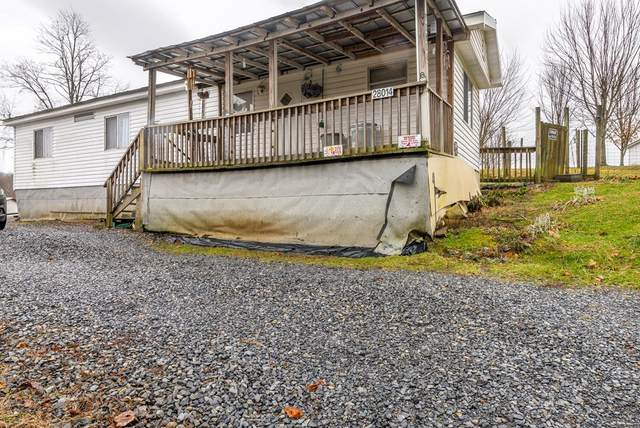 28024 Overbrook Drive, Meadowview, VA 24361 (MLS #72944) :: Highlands Realty, Inc.