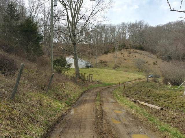 TBD Mcfarlane Lane, Rosedale, VA 24280 (MLS #73245) :: Highlands Realty, Inc.