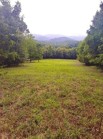 TBD Indian Meadow Lane, Wytheville, VA 24382 (MLS #73519) :: Highlands Realty, Inc.